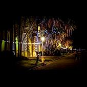 Balboa Park 140917 020_1_2_ 3b 170sq
